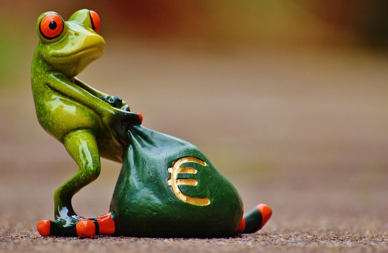 צפרדע וכסף