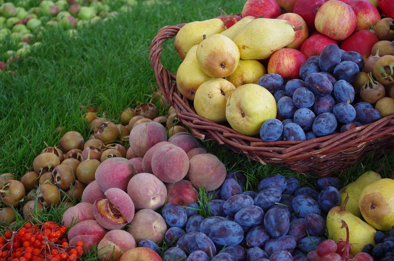 סוגים של פירות